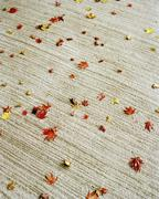 Autumn leaves scattered on carpet Stock Photos