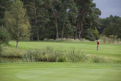A female golfer teeing off in the distance Stock Photos
