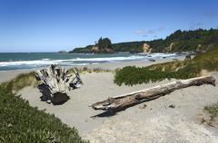 trinidad state beach in summer, california, usa - stock photo