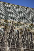 Patterned tiles on the roof of St Stephen's Cathedral, Vienna, Austria Stock Photos