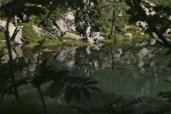A tranquil scene of sunlight on water Stock Photos