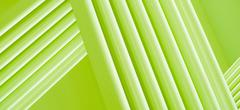 Full frame abstract of intersecting three dimensional green lines Stock Photos