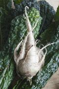 A parsnip and leaves of chard Stock Photos