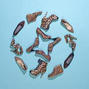 Various leopard print shoes arranged in a pattern - stock photo