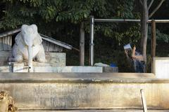 A person washing hair with a bucket next to an elephant statue, Heho, Burma Stock Photos
