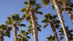 Imperial Beach 5 - stock footage