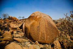 Stock Photo of Aboriginal etching on a rock, Broome, Western Australia, Australia