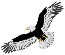 Eagle Stock Illustration