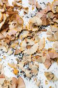 An abundance of pencil shavings and lead on a white background Stock Photos