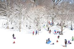 A crowd of people sledding in a park Stock Photos