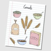 cereals doodles - lined paper - stock illustration