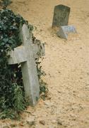 Overgrown tombstones in cemetery Stock Photos
