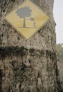 Sign for falling tree branches Stock Photos