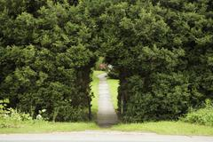Pathway through arch in hedge Stock Photos