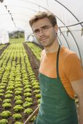 Stock Photo of Man working in greenhouse