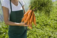 Farm worker holding bunch of carrots Stock Photos