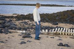 Nuori mies seisoo rannalla vieressä valas luun, Islanti Kuvituskuvat