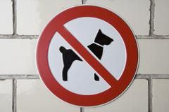 Stock Photo of No dogs allowed' sign