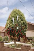 Christmas decorations on a tree in a suburban front yard Stock Photos