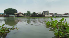 vegetation is floating on the river. thailand - stock footage