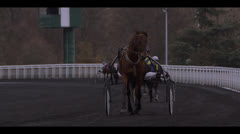 HARNESS RACING - HORSES APPROACHING 2 Stock Footage