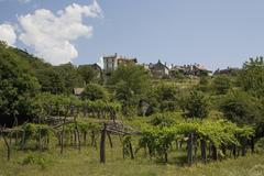 Vineyard and a village Stock Photos