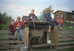 Children sitting on fence - stock photo