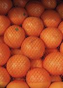 Pile of oranges under netting Stock Photos