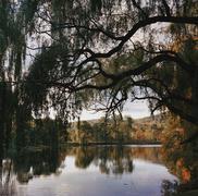 Autumn trees surrounding a lake Stock Photos