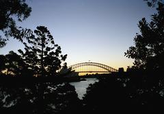 Tarkastele kautta puut Sydney Harbour Bridge Kuvituskuvat