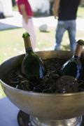 Pulloa samppanjaa jäissä viihde teltta Kuvituskuvat