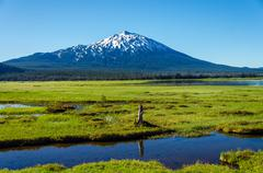 Mount Bachelor and Meadow Stock Photos