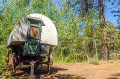 Covered Wagon in a Forest - stock photo