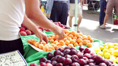 Vendor's Hands Sorting Apricots Fruit at Farmers Market Stock Footage
