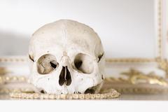 A human skull on a mantelpiece Stock Photos