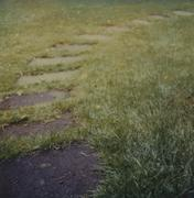 A garden path with stepping stones Stock Photos