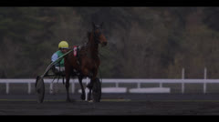 HARNESS RACING - HORSES APPROACHING 5 Stock Footage