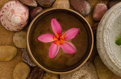 frangipani spa concept photo, lowlight ambient spa lighting, shallow dof - stock photo
