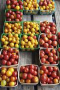 Crates of multi colored tomatoes, Nashville, Tennessee, USA Stock Photos