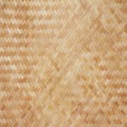 Bambusta rakenne Piirros
