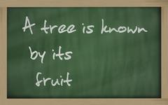 """ a tree is known by its fruit "" written on a blackboard Stock Photos"