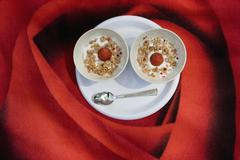 Two bowls of yogurt, granola and strawberries on a blanket with a rose print Stock Photos