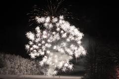 Firework celebration Stock Photos