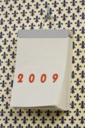 A German 2009 calendar - stock photo