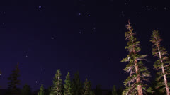 Starry sky rotate through trees, time lapse Stock Footage
