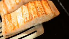 Alaskan Salmon Steaks Cooking Family Meal Stock Footage