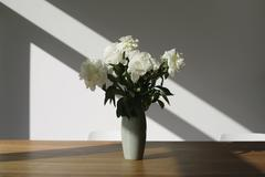 A vase of white peonies (Paeonia lactiflora) on a conference table Stock Photos
