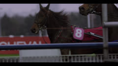 HARNESS RACING - FROM SIDE Stock Footage