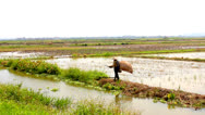 Stock Video Footage of Farmer fishing on the field