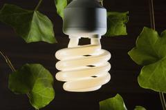 An illuminated energy saving light bulb surrounded by ivy leaves Stock Photos